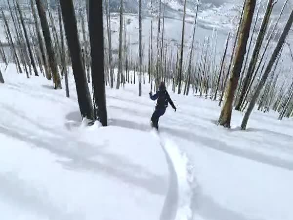 Freeride napříč lesem