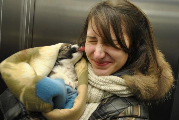 GALERIE - Dojemné setkání páníčků a psů 2