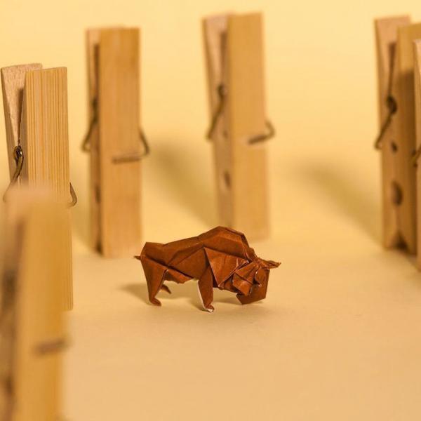 GALERIE - Každý den jedno origami #2