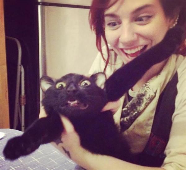 GALERIE - Kočky, které se nechtějí fotit