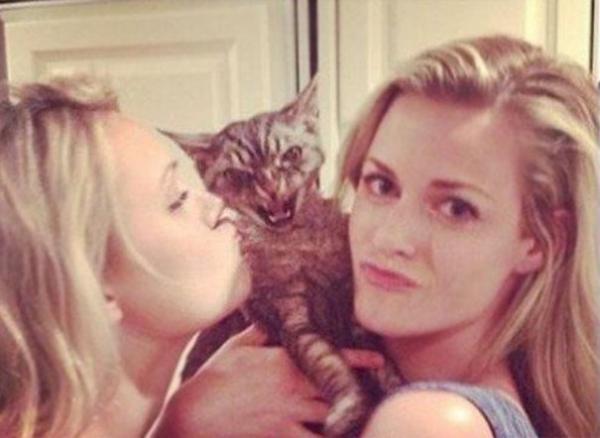 GALERIE - Kočky nemají chuť se fotit #2