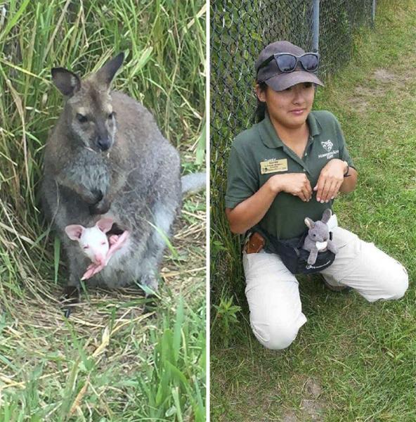 GALERIE - Ošetřovatelé napodobují zvířata