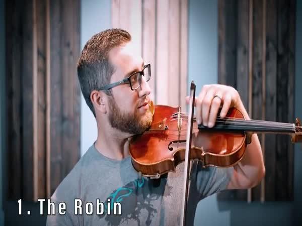 19 zajímavých zvuků na housle