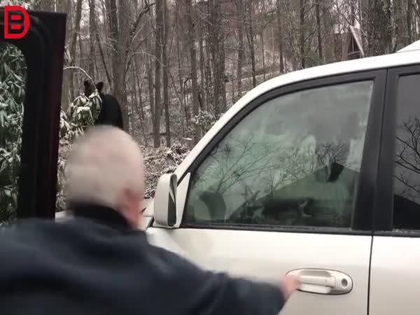 Setkání s medvědem #32