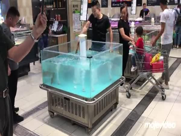 Ryba vylétla z akvária (Čína)