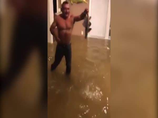 Chytání ryb v obýváku