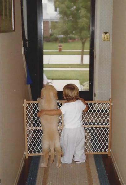GALERIE - Psi jsou úžasní hlídači #2