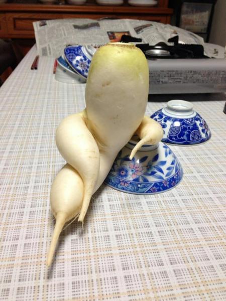 GALERIE – Svůdná zelenina vás dostane