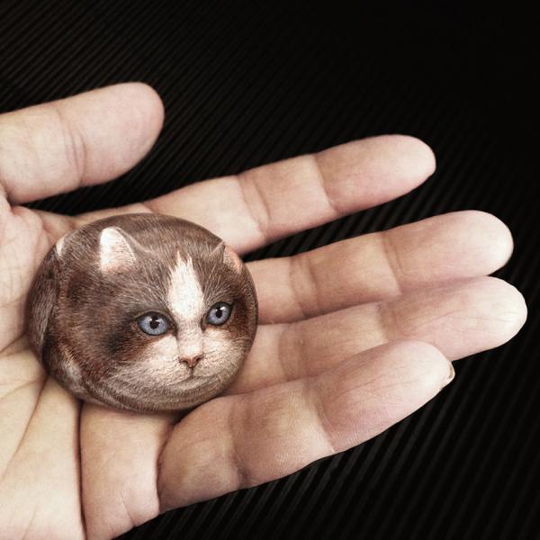 GALERIE – Zvířátka na kamenech