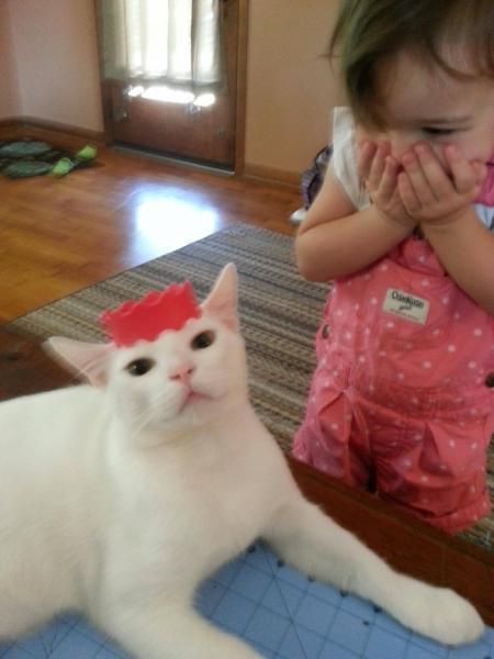 GALERIE – 15 dětí, které milují zvířata