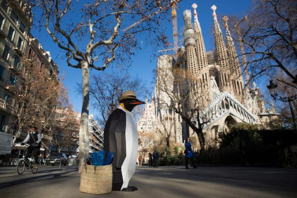 GALERIE – Cesta kolem světa tučňáka