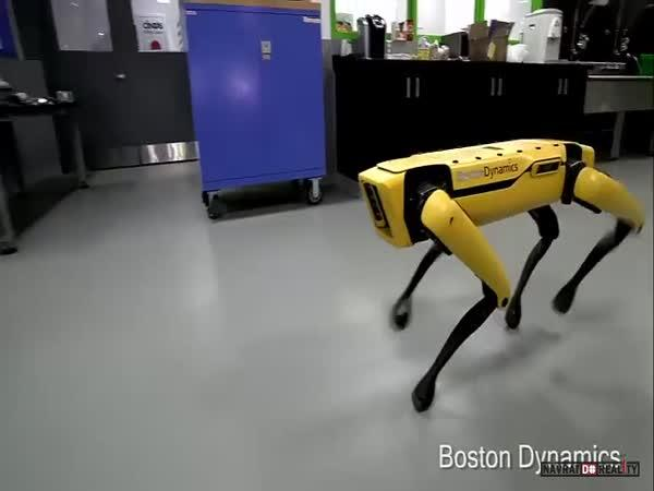 Robot od Boston Dynamics #2