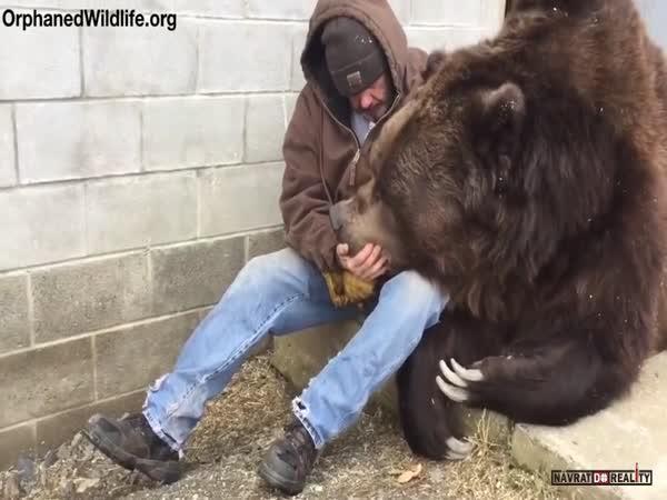 Smutný medvěd potřebuje obejmout