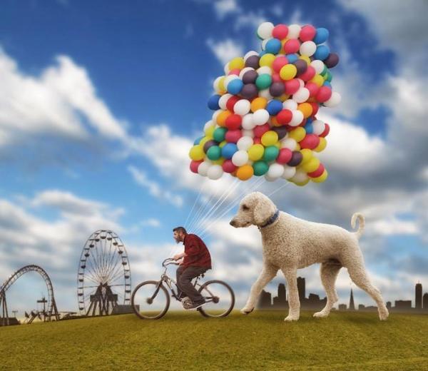 GALERIE - Gigantický pes s páníčkem #1