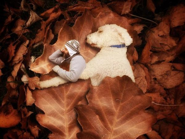GALERIE - Gigantický pes s páníčkem #4