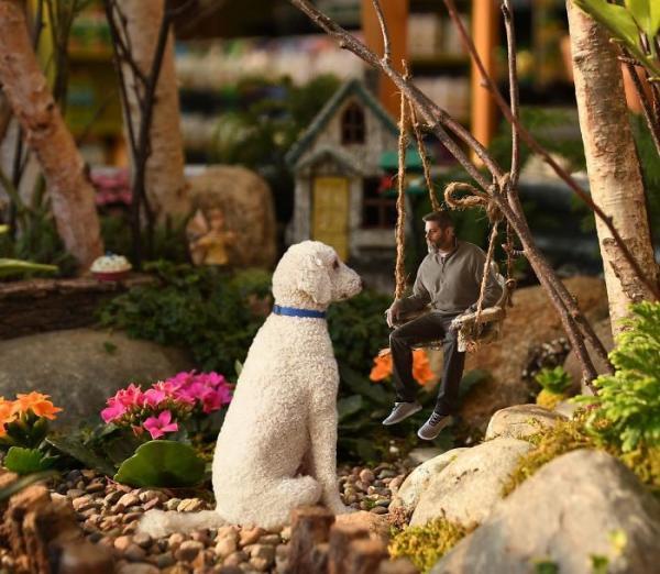 GALERIE - Gigantický pes s páníčkem #5