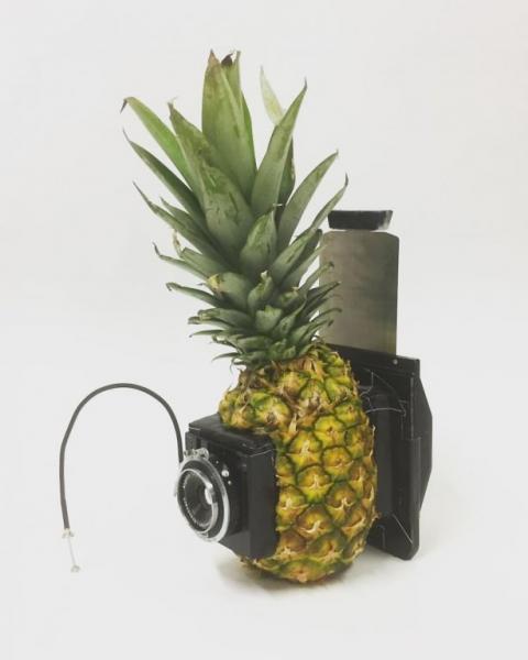 GALERIE - Foťáky z ananasu nebo z chleba