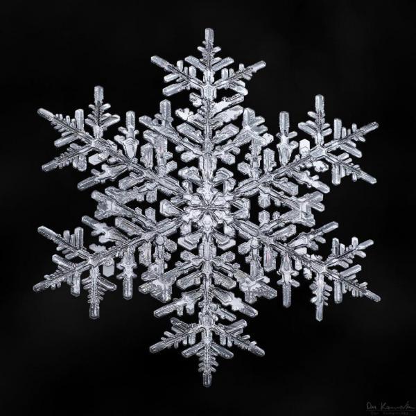 GALERIE - Dokonalé sněhové vločky