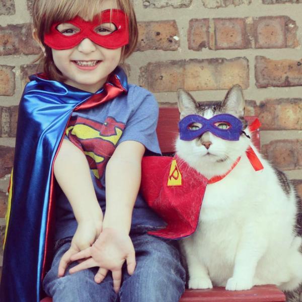 GALERIE – Superhrdinské kočky