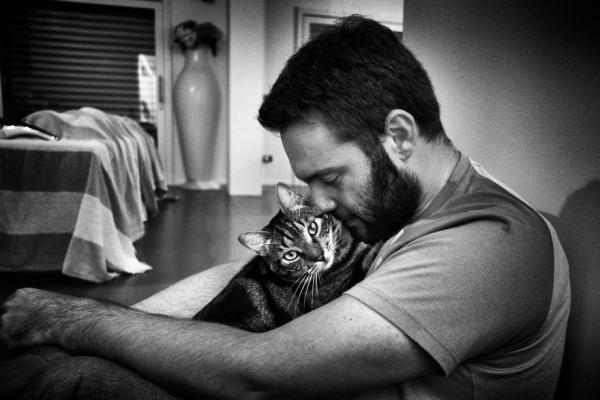 GALERIE - Kočka ovládla člověka