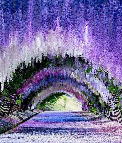 GALERIE - Nejkrásnější místa na světě