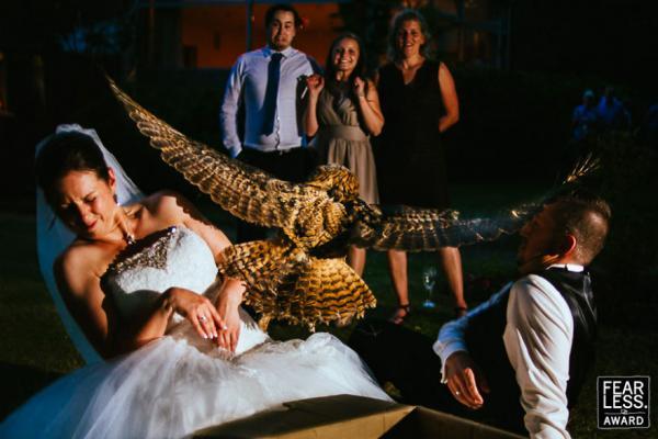 GALERIE - Nejlepší svatební fotky roku 2017 #4