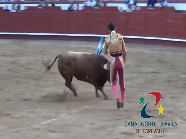 Jak býk toreádora oskalpoval