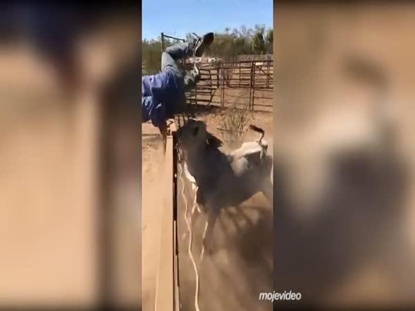 Vypadni z mého výběhu!