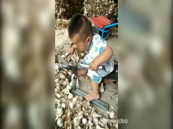 Pracovitost level Asiat