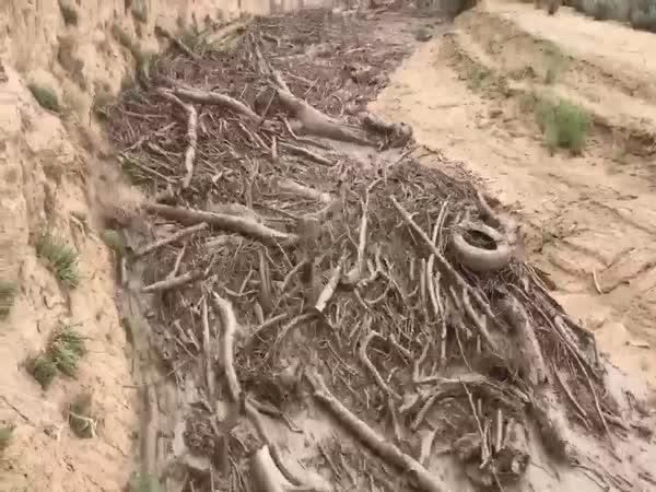 Bleskové záplavy (USA)