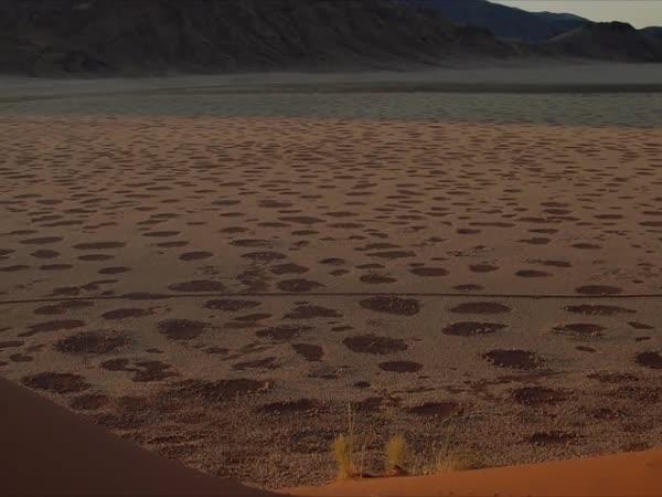 TOP 5 - Věci nalezené v poušti