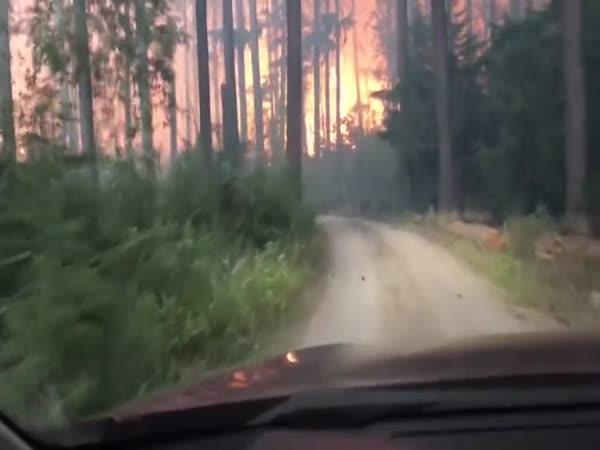 Turisté unikali z hořícího lesa