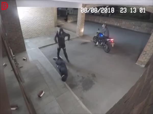 Zloději v akci #8