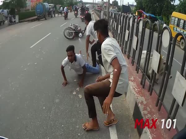 Kráva účastníkem nehody (Indie)