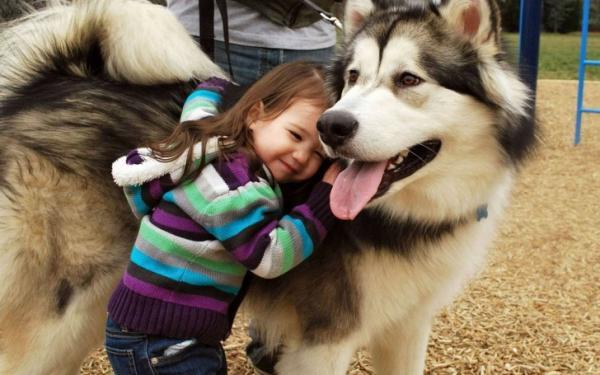 GALERIE - 15 roztomilých fotek dětí se zvířaty!