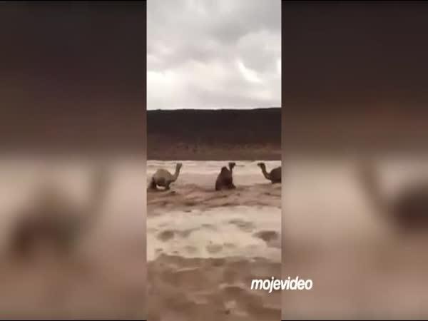 Silné záplavy v Saúdské Arábii
