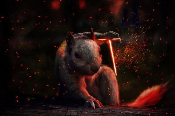 GALERIE - Vtipné fotomontáže zvířat