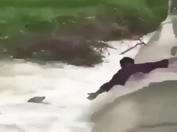 Dojemná záchrana psa