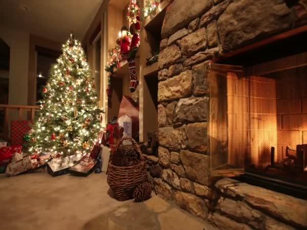 TOP 10 – Podivné vánoční zvyky