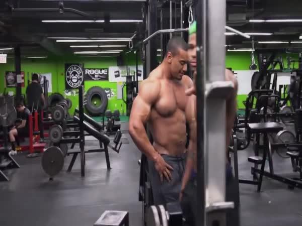 Jak rostou svaly?