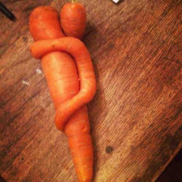 GALERIE - Zelenina je živější, než byste čekali