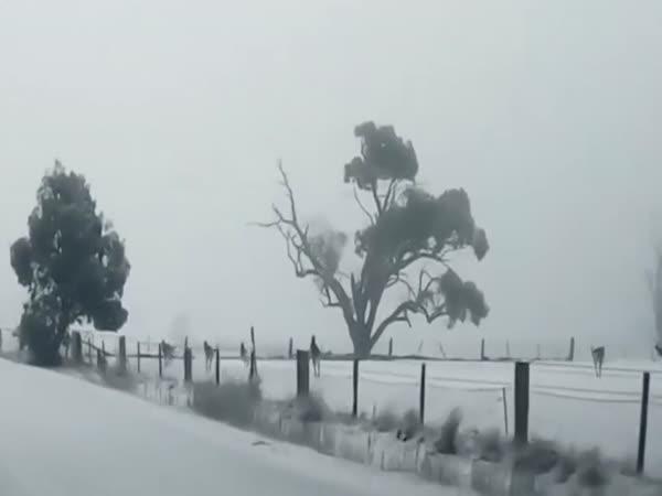 Zasněžená Austrálie
