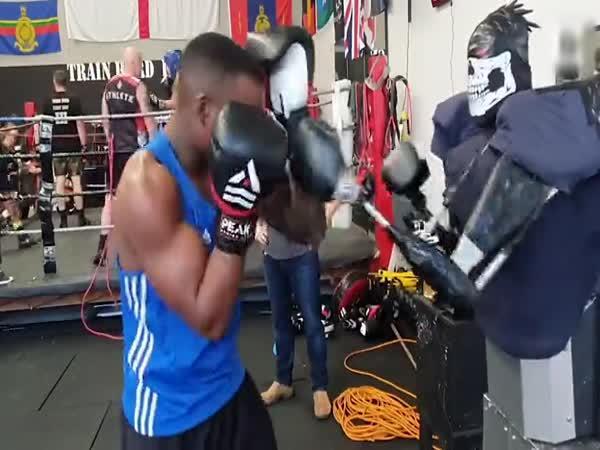 Boxovací robot