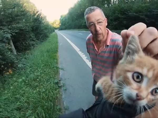 Motorkář zachránil koťátku život