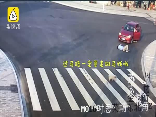 Pes chytřejší než hloupý chodec