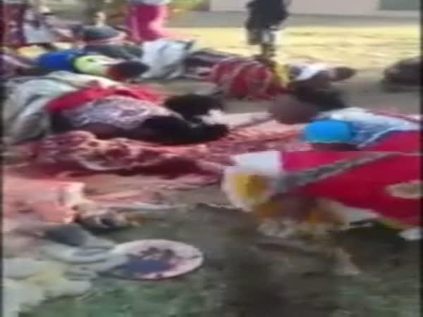 Rituál s mrtvými zvířaty v Africe