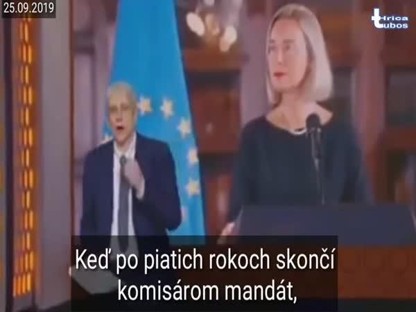 Komisař v europarlamentu je zlatý důl