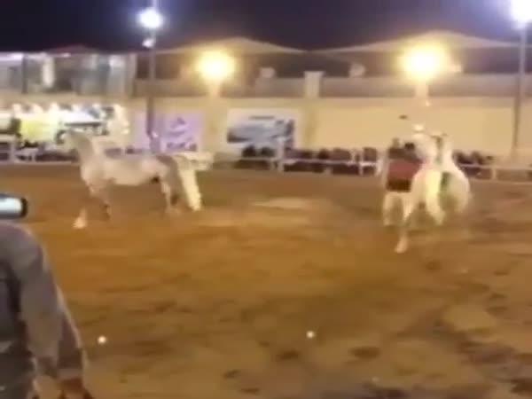 Kůň s ním pěkně zametl