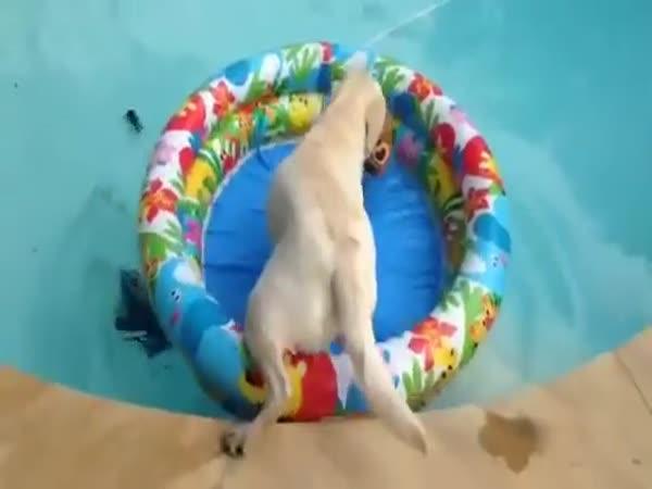 Relax v bazénu je pro každého!