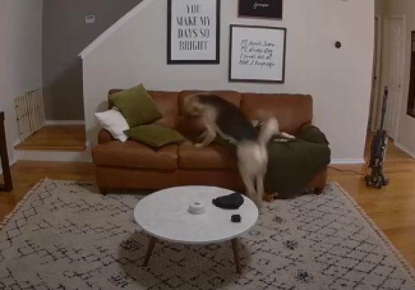 Dones mi tu ponožku!
